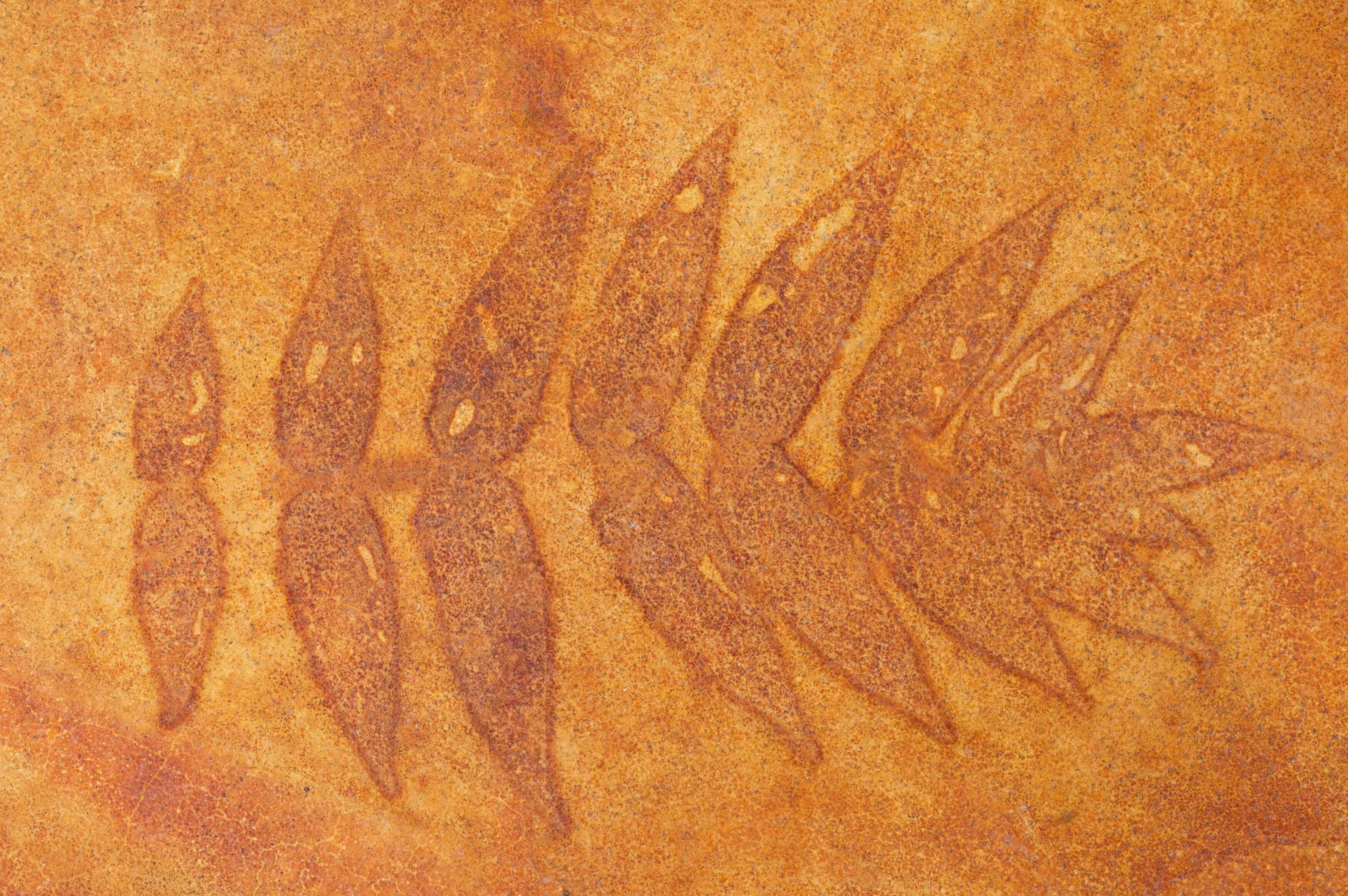 Stamped concrete leaves